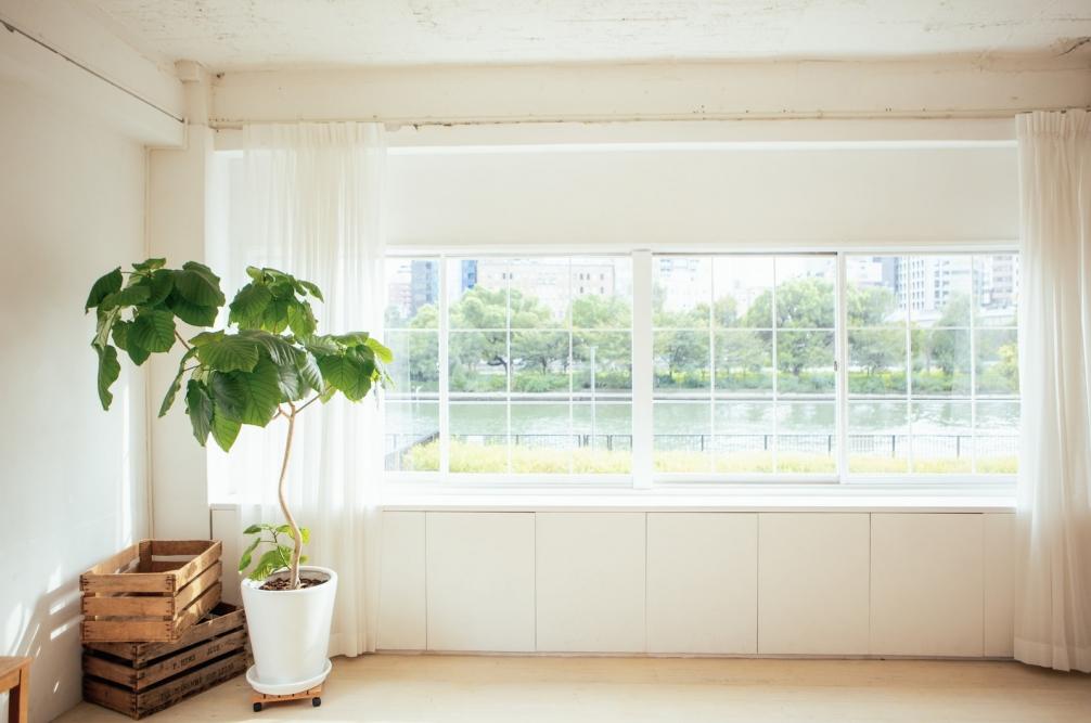 窓③.jpg